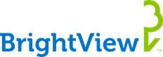 BirghtView Logo